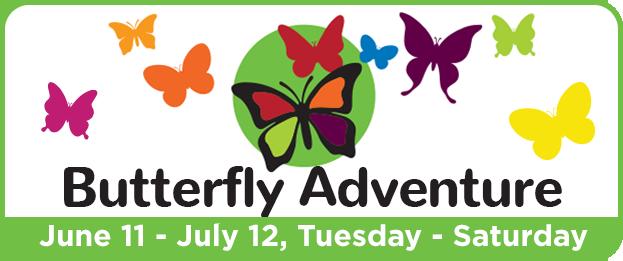 ButterflyAdventure2019